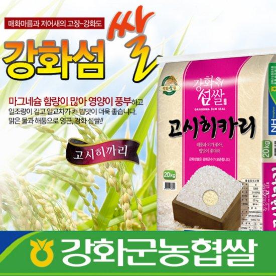 2017년쌀/고시히카리/강화섬쌀/쌀20Kg/농협쌀