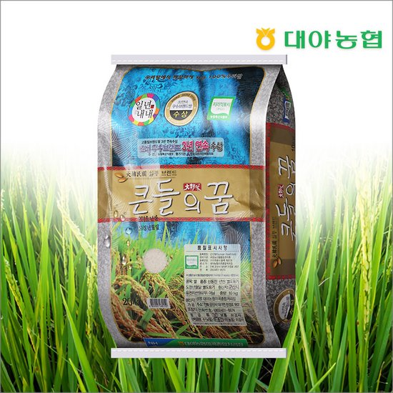 대야농협 큰들의꿈 신동진쌀 20kg