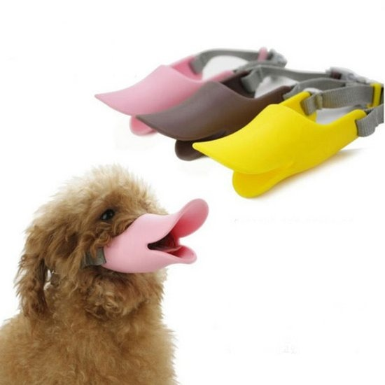 강아지 오리입마개