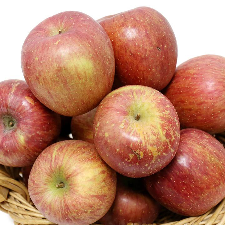 제철 사과 8kg[흠과] 35과내
