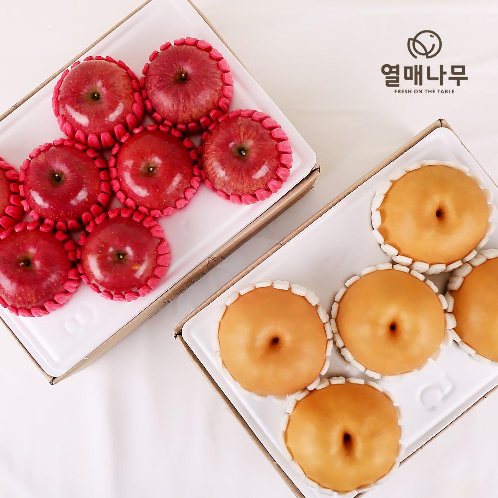 [열매나무][1+1]과일 2종세트[사과 2kg/7-9과+배 2.5kg/4-6과]
