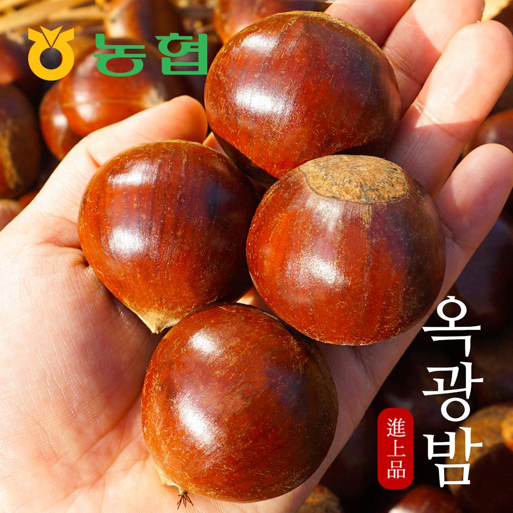 [농협] 달고 고소한 토종맛 옥광밤 로얄대 1kg햇밤