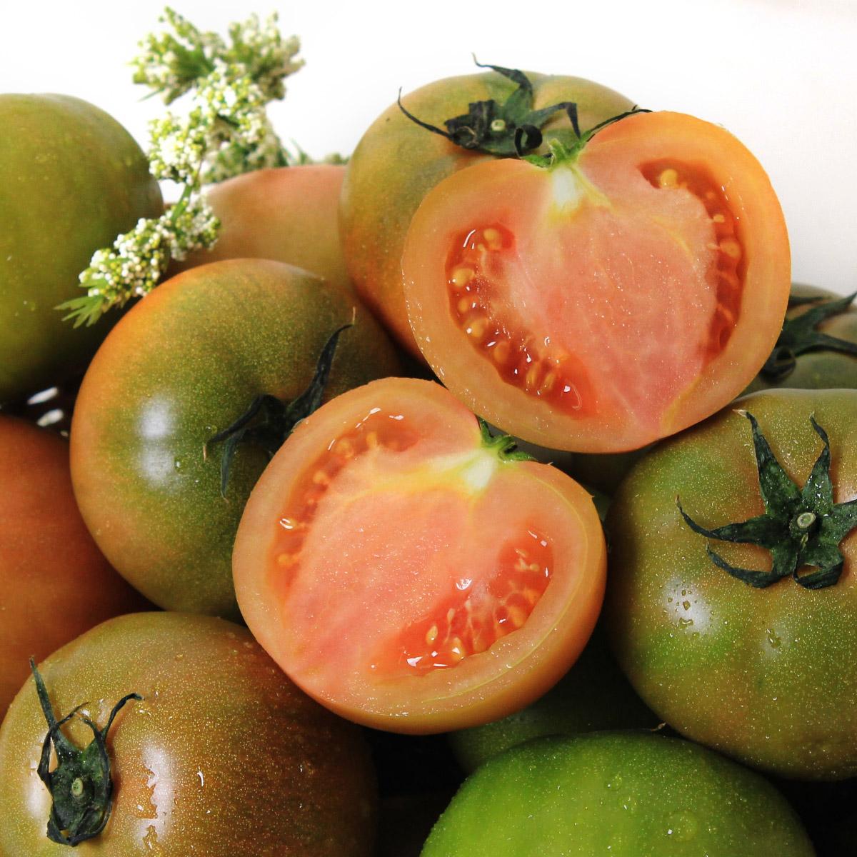 토마토러브 대저 찰토마토 5kg4~6번