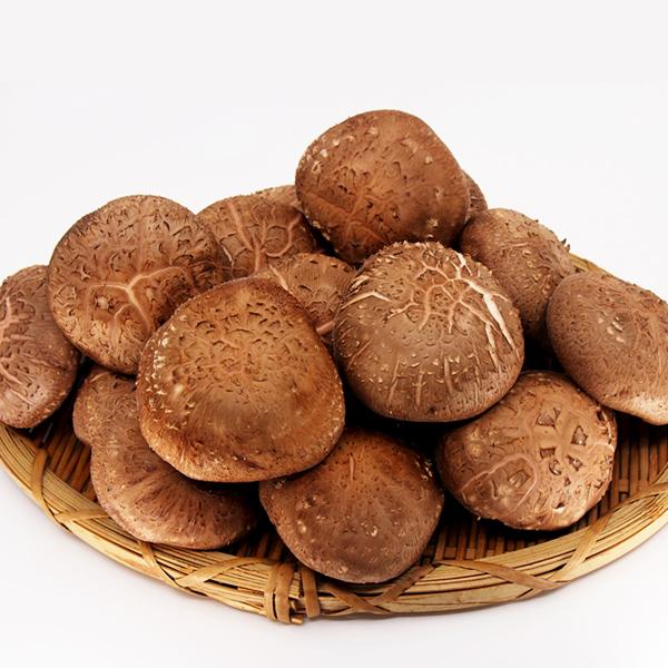 [향채움] 표고버섯 600g