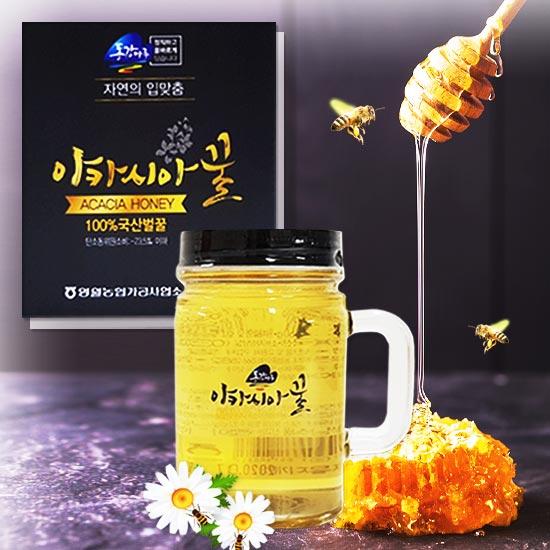 [1병도 무배]벌꿀 100% 영월농협 동강마루 아카시아꿀 450g