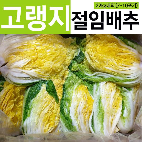 고랭지 절임배추 22kg내외 /7~10포기 내외 /김장배추 절인배추